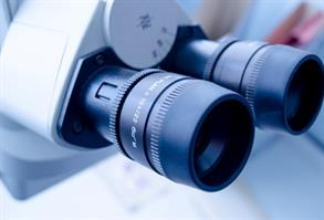Picture of the lenses of a microscope